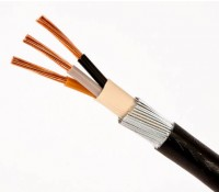 6943X PVC 10mm 3 Core Armoured Cable 1M